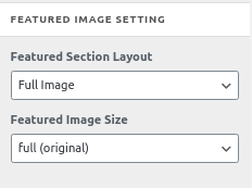 featured-image-setting-cosmoswp-blog-options
